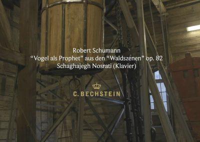 """Schumann: """"Vogel als Prophet"""" aus den """"Waldszenen"""" op. 82 Grube Samson"""