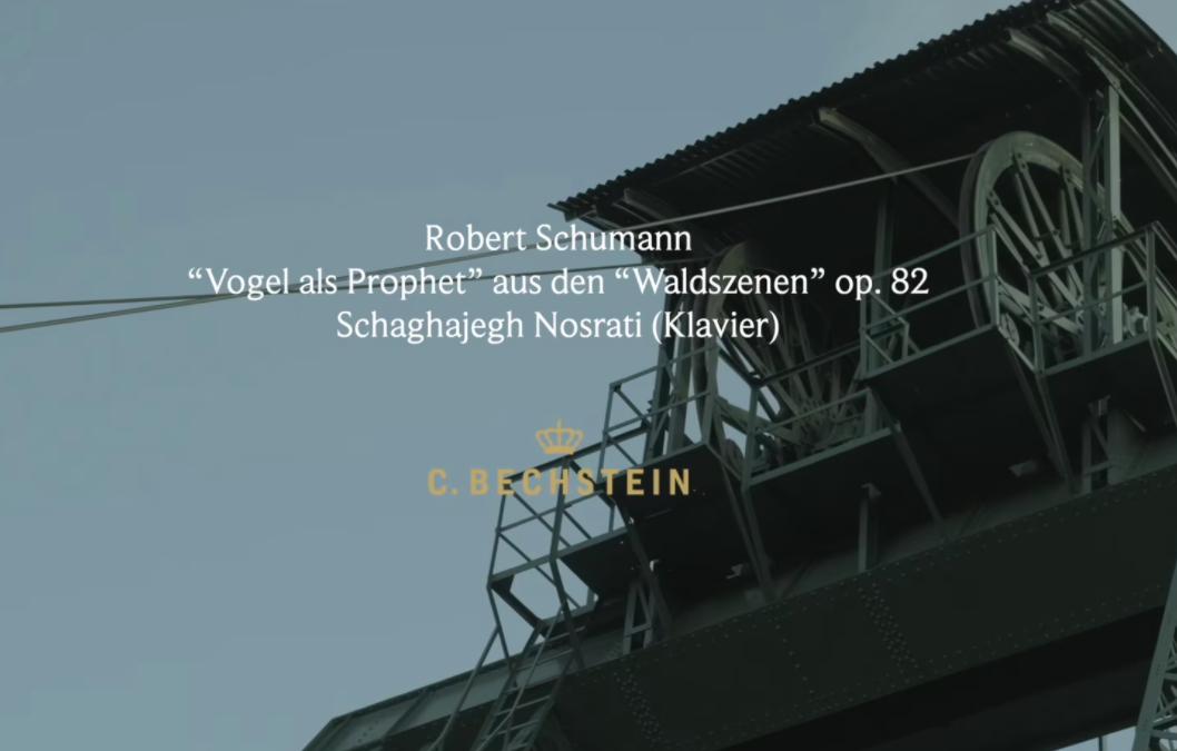 """Schumann: """"Vogel als Prophet"""" aus den """"Waldszenen"""" op. 82 Schaghajegh Nosrati (Klavier) Ottiliaeschacht"""